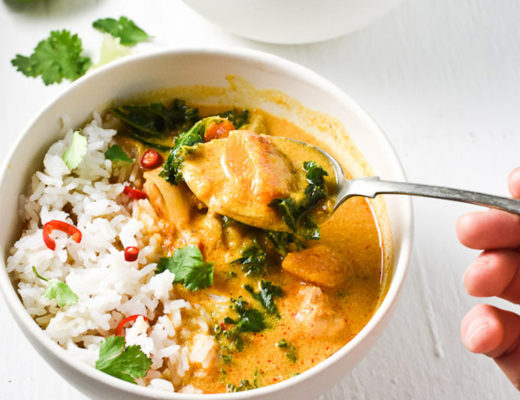 crock pot thai chicken curry by the endless meal