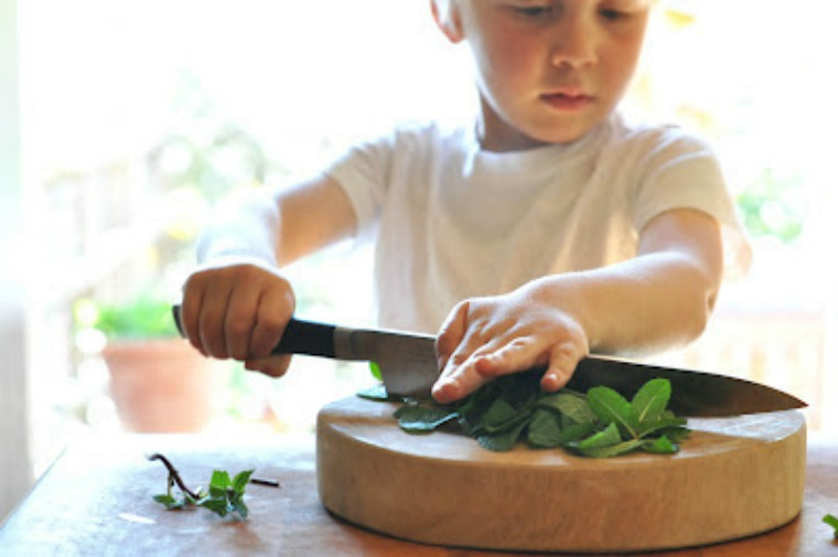 boy chopping vegetables dash and bella