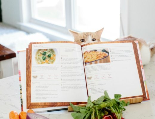 making a cookbook featured image